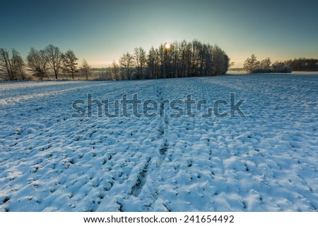 winter landscape with sunrise over field - stock photo