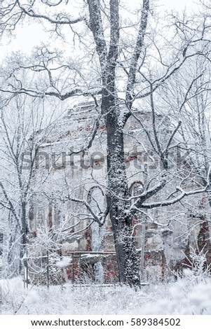 Winter landscape with the ruins of the old church and snow-covered trees