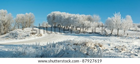 Winter landscape with trees covered with hoarfrost - stock photo