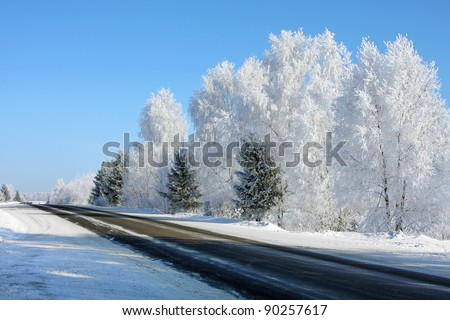 Winter landscape with trees in sunny cold day - stock photo