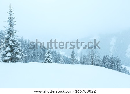Winter mountain foggy dull day snowy landscape - stock photo