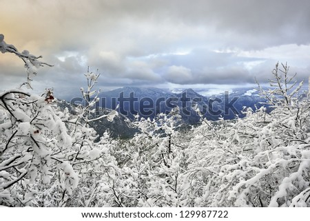 Winter mountains landscape from Macedonia