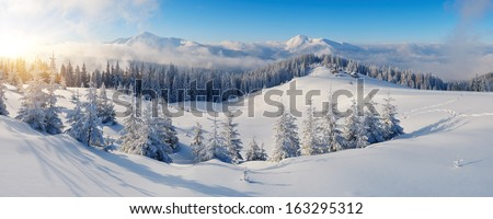 Winter panorama of mountains on a sunny day. Carpathians, Ukraine - stock photo