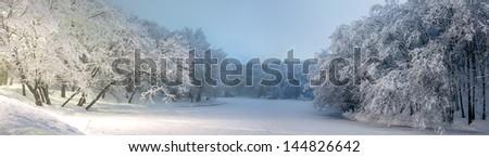 Winter park/Beautiful panorama of winter park in Kiev - stock photo