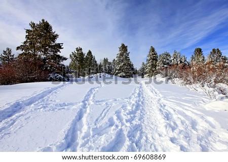 Winter park near lake Tahoe - stock photo