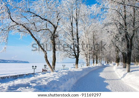 Winter  park, scenery - stock photo