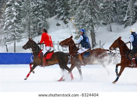 Winter polo match in Cortina - Italia