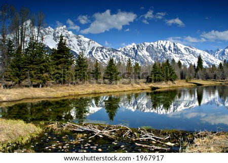 Winter Reflection in the Tetons