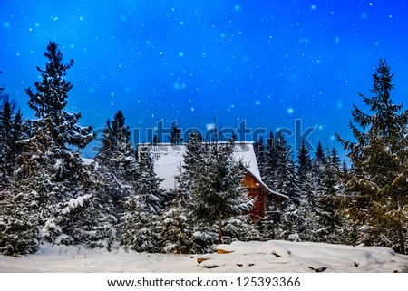 winter rime and snow covered Christmas fir trees on mountainside. Mountain house during the winter - stock photo
