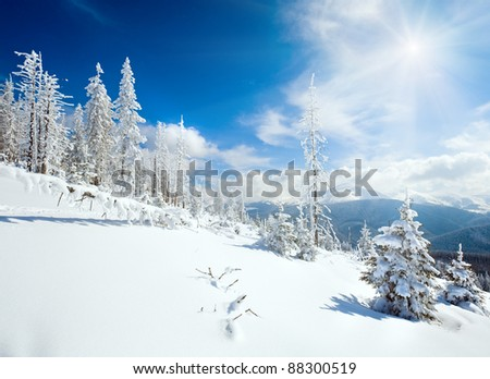 winter rime and snow covered fir trees on mountainside (Carpathian Mountains, Ukraine) - stock photo