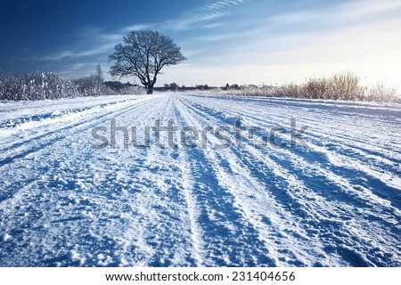 Winter road at sunrise - stock photo
