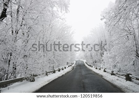winter road in snow - stock photo