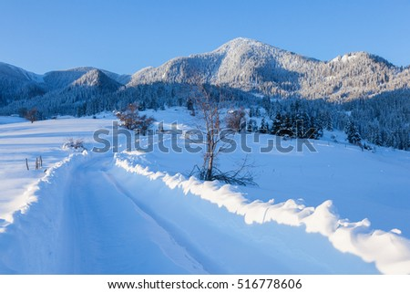 Winter road in the forest on blue sky