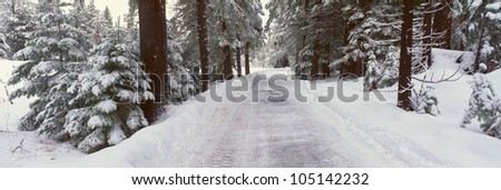 Winter Road Near Lake Tahoe, California - stock photo