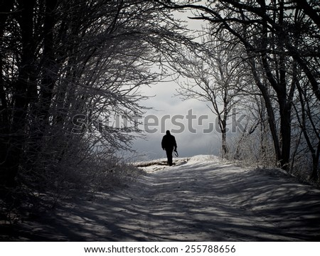 Winter Road through Snowy Trees and Walking Alone Man against Cloudy Sky Outdoors - stock photo