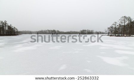 winter rural scene with fog and white fields and frost. latvia - stock photo