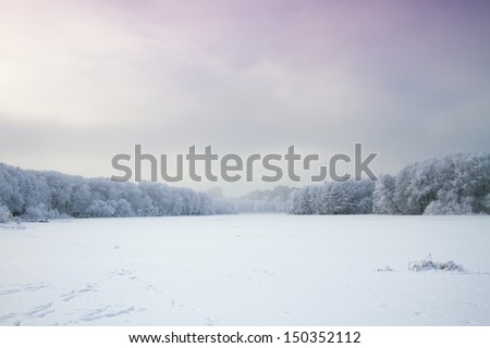 Winter's Tale. wood and the moon - stock photo