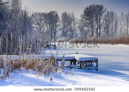 Winter scape with snowy reed and frosted water