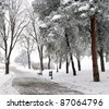 Winter scene at the park - stock photo