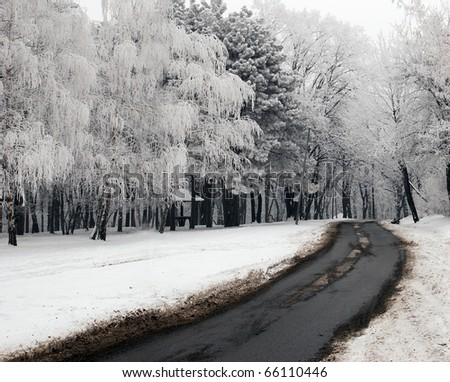 Winter scene at the park Kosutnjak, Belgrade - stock photo