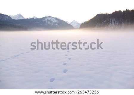 Winter scene of country side in Europe - stock photo