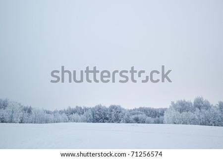 Winter scenery - stock photo