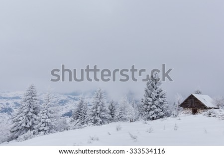 Winter scenery in the mountains with fresh powder snow
