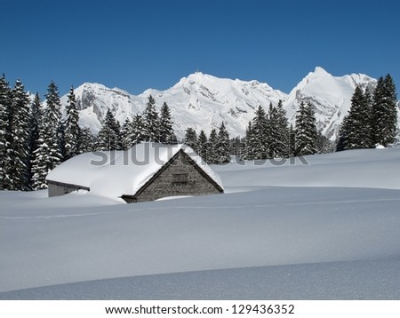 Winter scenery in Toggenburg, hut, trees and Mt  Saentis