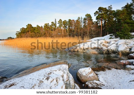 Winter scenery with reeds and rocks - stock photo