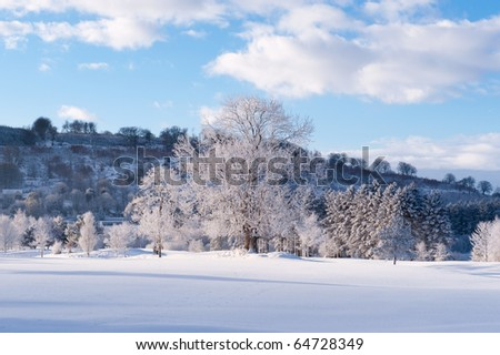 Winter season in the country on a sunny day - stock photo