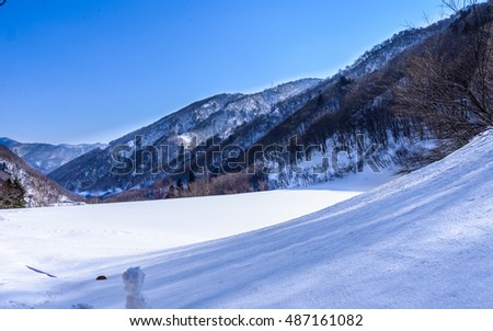 Winter season snow fall in minakami area mountain in gunma, japan