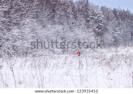Winter skiers in a forest - stock photo
