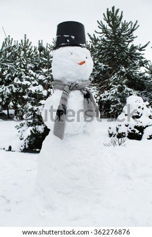 winter, snowman and winter trees as a background - stock photo