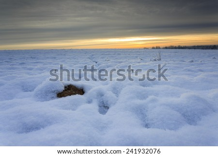 Winter snowy fields in north Poland/Winter snowy fields sunrise - stock photo