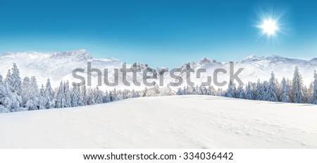 Winter snowy forest with alpen panorama and blue sky - stock photo