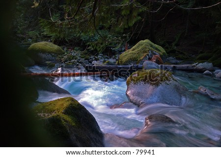 Winter Stream - stock photo