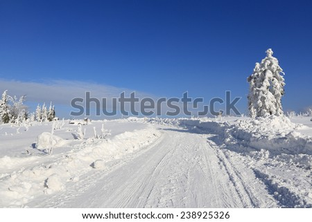 Winter sunny landscape and trails for skiers, Sumava, Czech republic