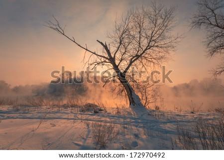 Winter sunrise landscape with foggy river.  - stock photo