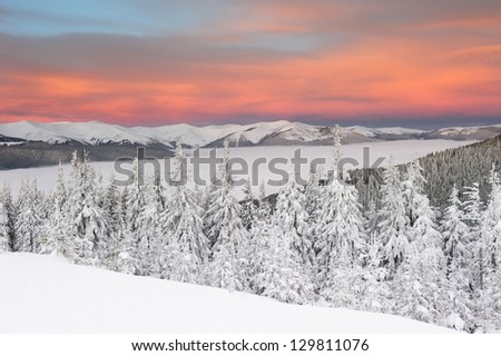 Winter sunset in Carpathian mountains - stock photo