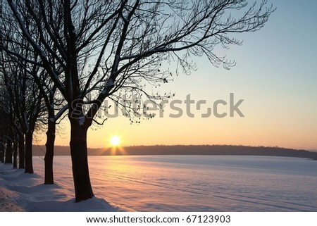Winter sunset over the field with trees in the foreground. - stock photo