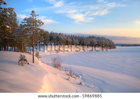 Winter time in forest lake. Evergreen wood and shore in snow - stock photo