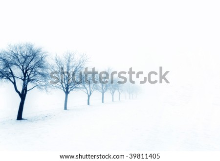 Winter trees in snow - stock photo