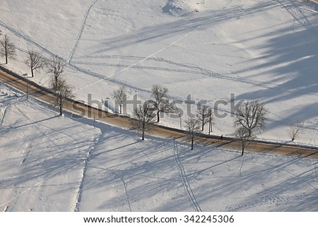 Winter trees in the park - stock photo