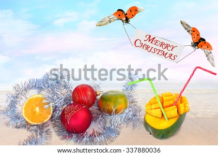 Winter tropical holidays and vacation of Christmas and New Year. Magic seaside background with red baubles, sweet citrus and mango fruits and ladybugs flying with Merry Christmas greeting banner  - stock photo