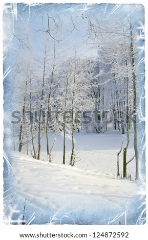 Winter view background