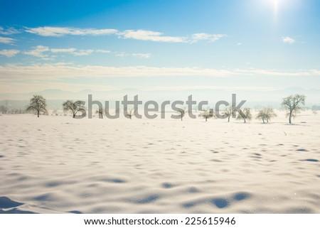 winter wonder land - stock photo