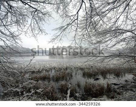 winterly Lakeside - stock photo