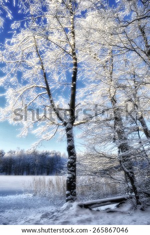 Wintertime at Lake Liepnitzsee, Germany - stock photo