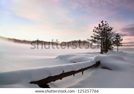 Wintry landscape III. Mist over frozen lake, fallen foreground, moody sky - stock photo