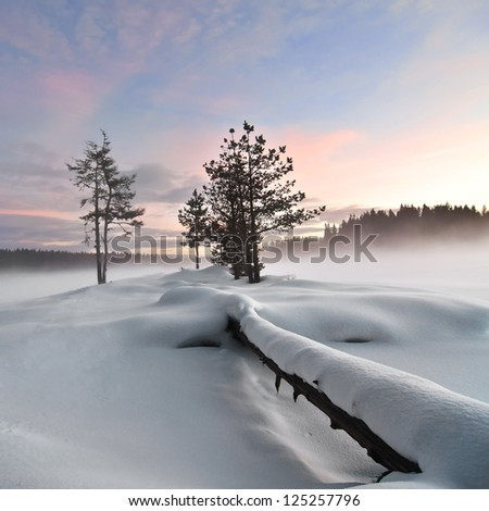 Wintry landscape IV. Mist over frozen lake, fallen tree foreground, moody sky - stock photo